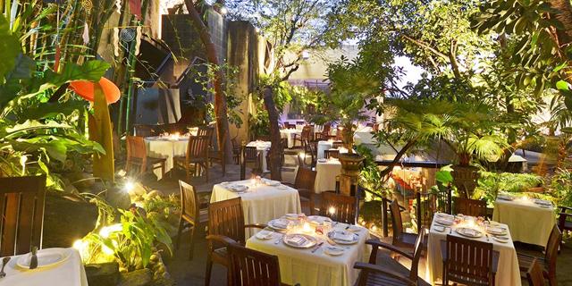 Cafe Des Artistes Puerto Vallarta